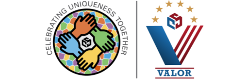 0920 Valor - Veterans ERG Logo TRANSPARENT