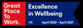GPTW Excellence in Wellbeing (RGB)_April 2020 ÔÇô April 2021 (1)